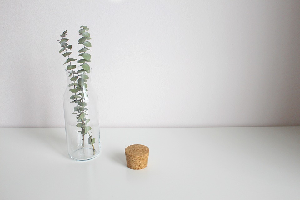 Eucalyptus, Leaves, Vase, Decoration, Glass, Leaf