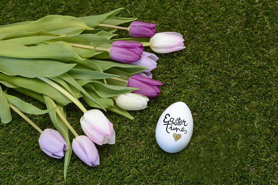 Easter, Easter Egg, Tulips, Happy Easter, Decoration