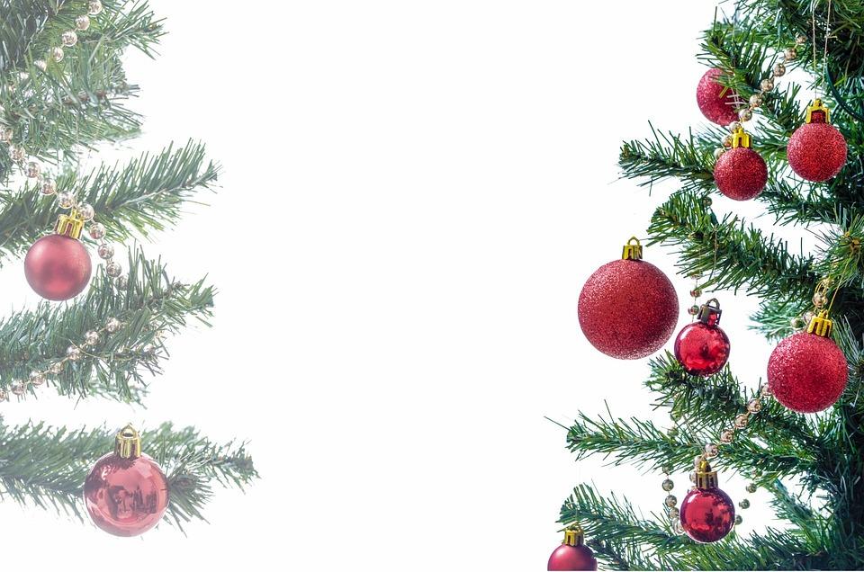 Tree, Present, Xmas, Decorated, Isolated, Decoration