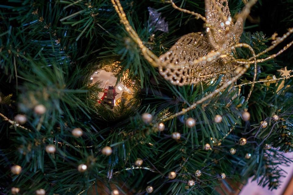 Christmas, Decoration, Tree, Lights, Ornaments, Star