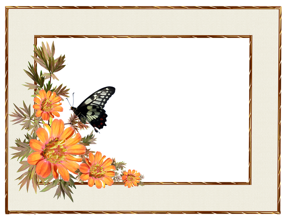 Free photo Decorative Border Flowers Frame Butterfly - Max Pixel