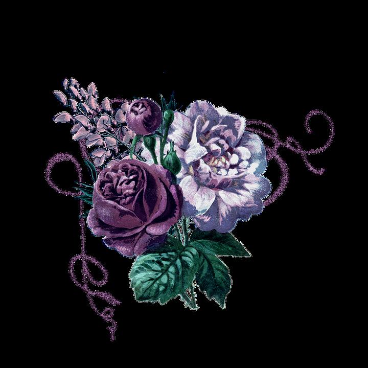 Roses, Ornament, Vintage, Flowers, Decorative