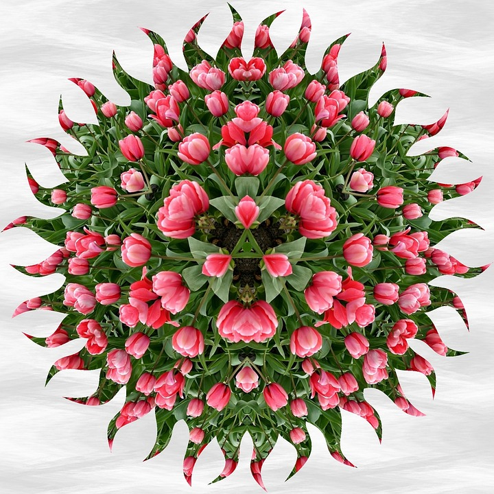 Mandala, Pattern, Tulips, Ornament, Decorative, Floral