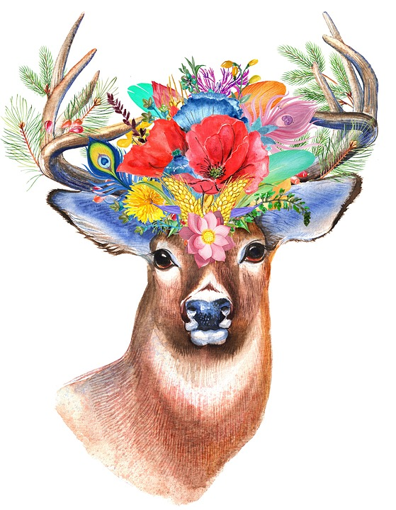 Stag, Wildflower, Floral, Boho, Flower, Deer, Woodland