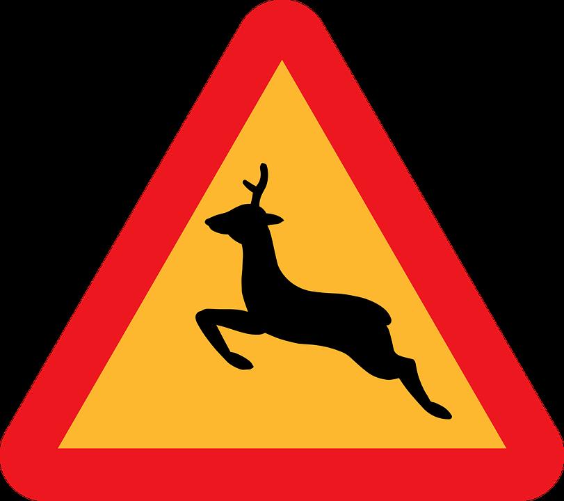 Deer Crossing, Warning Deer Crossing