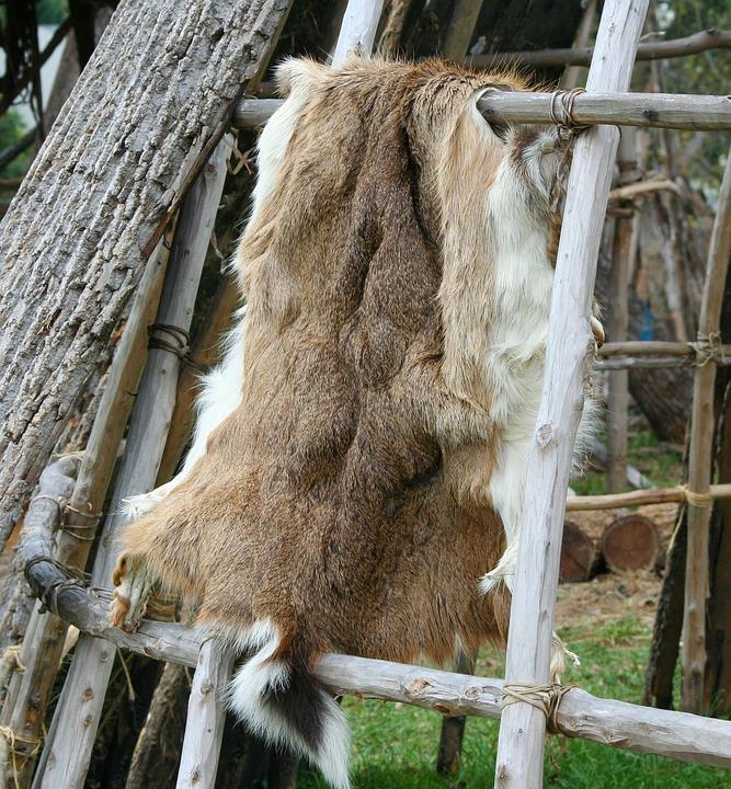 Deer Hide, Pelt, Native American, Fur, Coat, Tanning