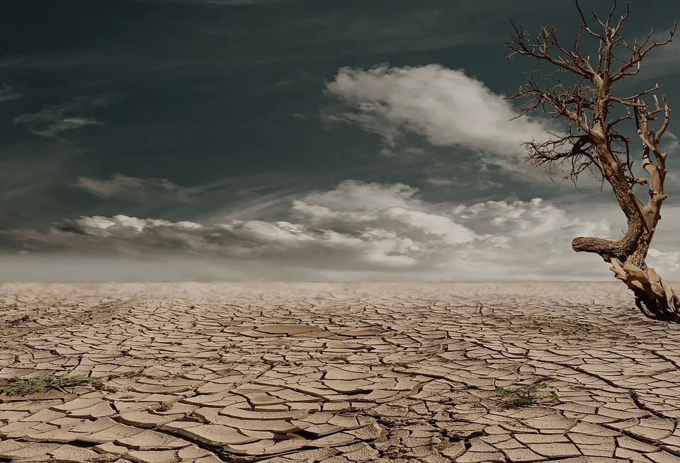 Desert, Drought, Composing, Dehydrated, Clay Soil, Clay