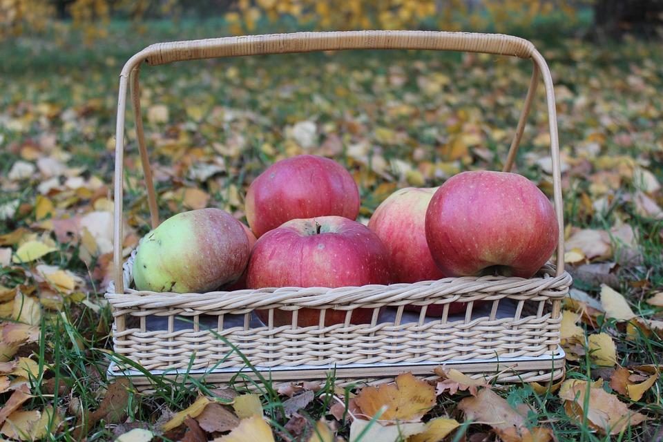Basket, Apple, Autumn, Fruit Basket, Delicious, Fresh
