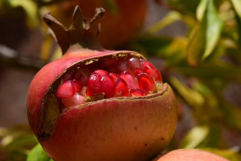 Pomegranate, Sweet, Delicious, Fruit, Food, Vitamins