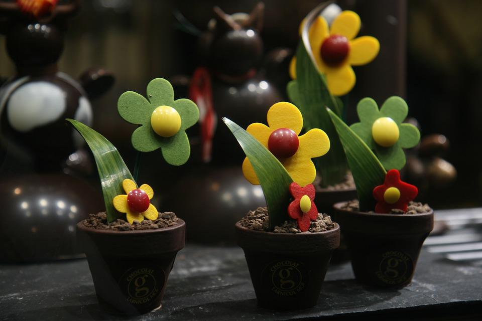 Flower, Sweet, Delicious, Style, Pot, Chocolate