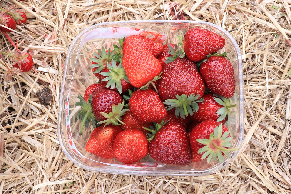 Strawberry, Fruits, Food, Red, Delicious, Fresh
