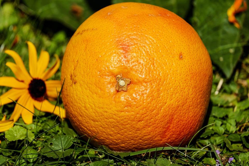 Grapefruit, Fruit, Vitamins, Tropical Fruits, Delicious