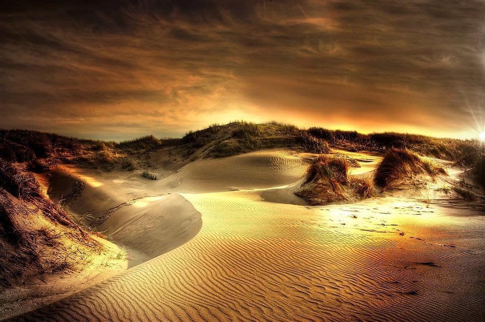 Dunes, Sea, North Sea, Beach, Sand, Denmark, Summer