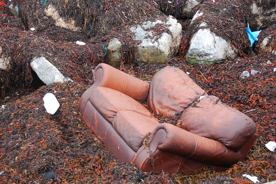 Sofa, Couch, Garbage, Deposit, Old, Seaweed, Dirty