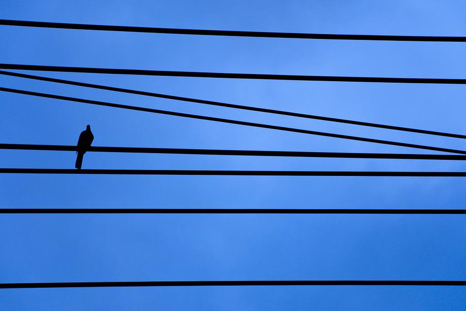 Cable, Sky, Wire, Blue, Bird, Depression, Silhouette