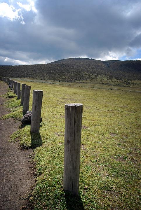 Barrier, Palo, Landscape, Depth, Perspective, Nature