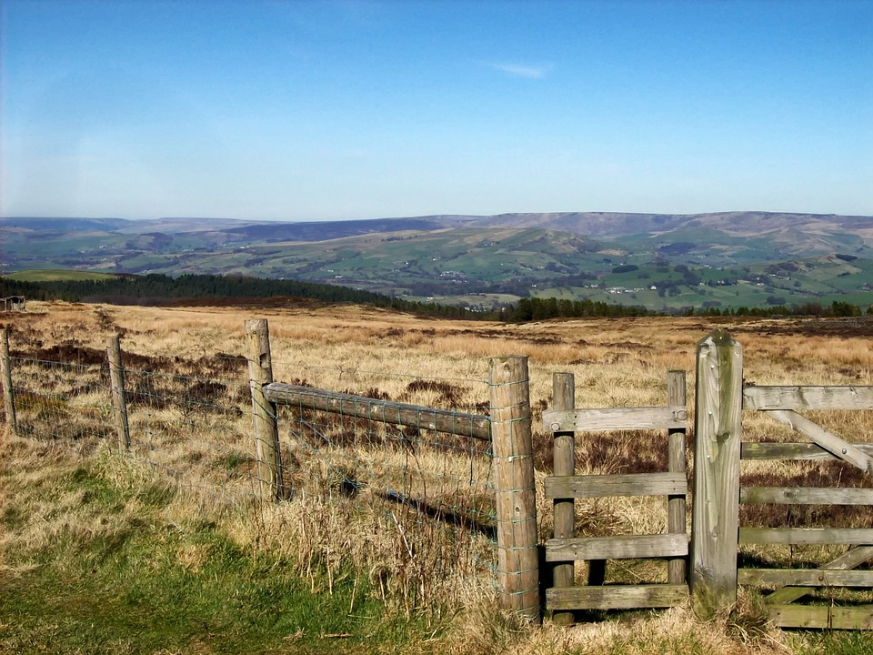 Derbyshire, England, Great Britain, Moorland, Moors