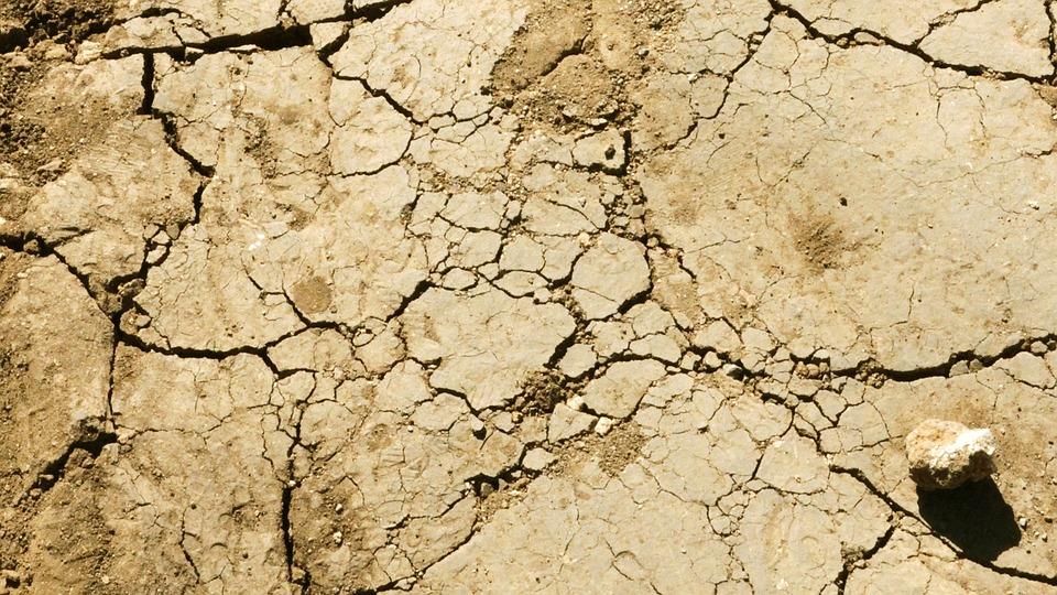 free photo desert dry ground texture crack texture ground