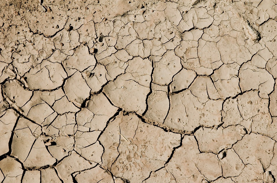 Desert, Dry, Drought, Cracked, Ground, Earth, Land
