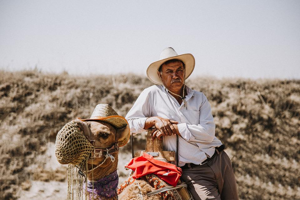 Man, Camel, Animal, Human, Nature, Hat, Desert, Old Man