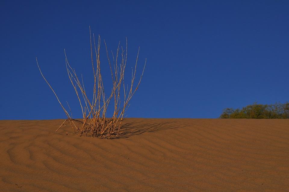 Desert, Dry, Sand, Sky, Nature, Landscape, Arid