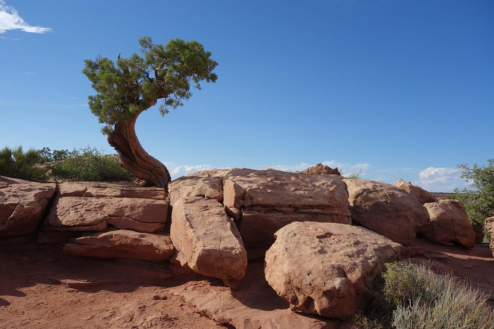 Nature, Landscape, Rock, Desert