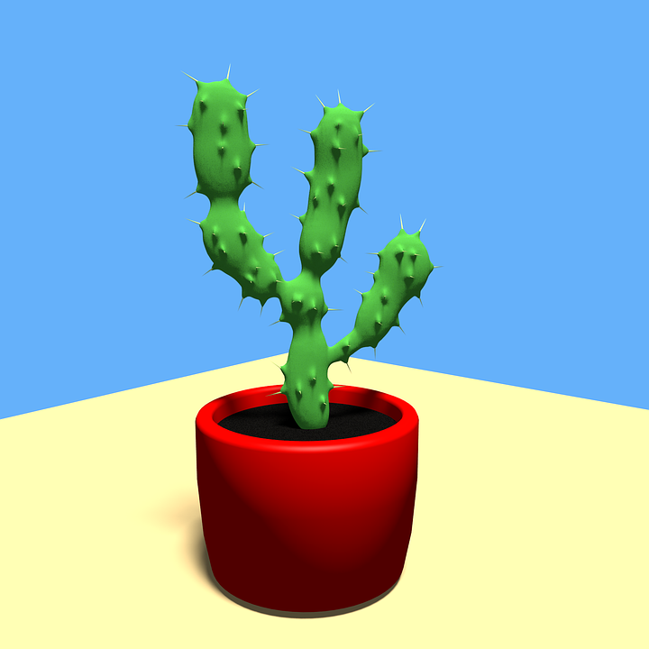 Cactus, Desert, Dry, Plant, Nature, Pot, Natural