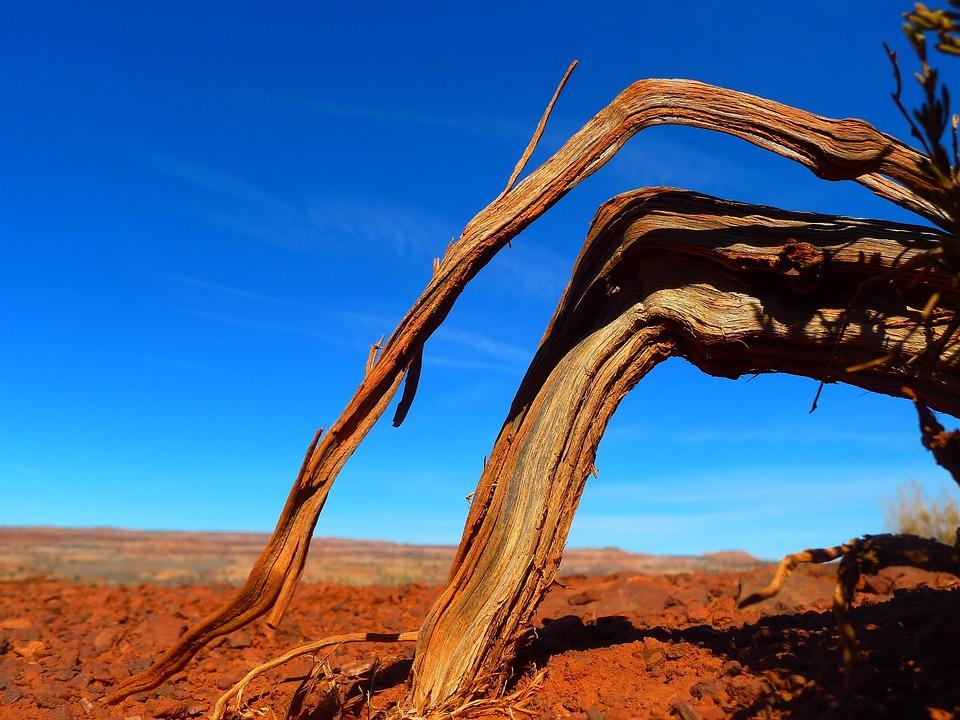 Utah, Landscape, Desert, Sky, Clouds, Root, Barren