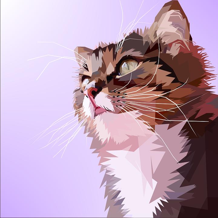 free photo design cat love cat pop art geometry animal max pixel