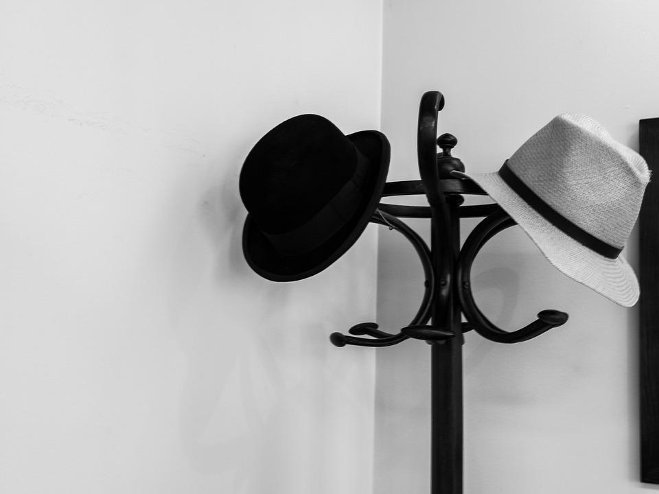 Hat, Coat Rack, Wing, Pet, Fashion, Elegance, Design