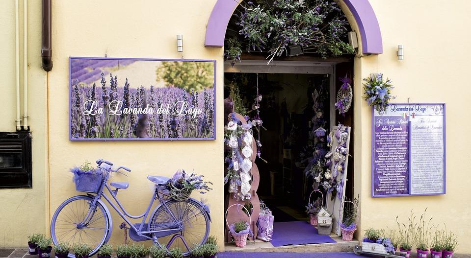 Flower Shop, Flowers, House, Lavender, Purple, Design