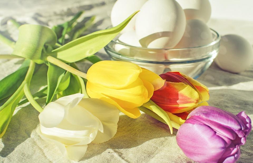 Egg, Easter, Flower, Desktop, Healthy, Color, Pastel