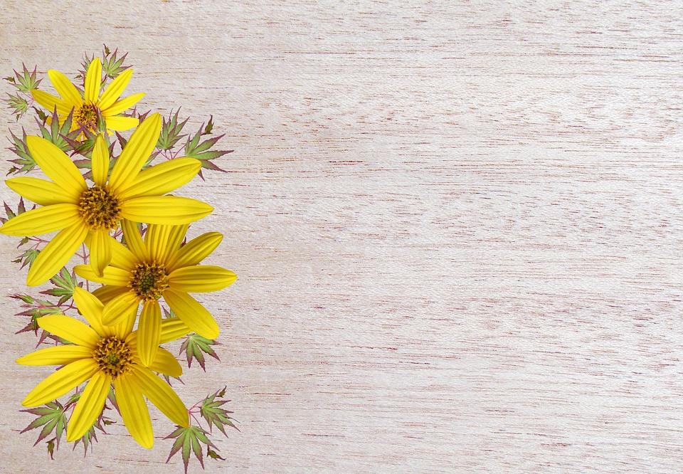 Greeting Card, Flower, Desktop, Summer, Flora
