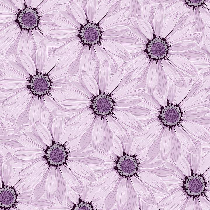 Background, Desktop, Flowers, Lilac, Purple Flowers