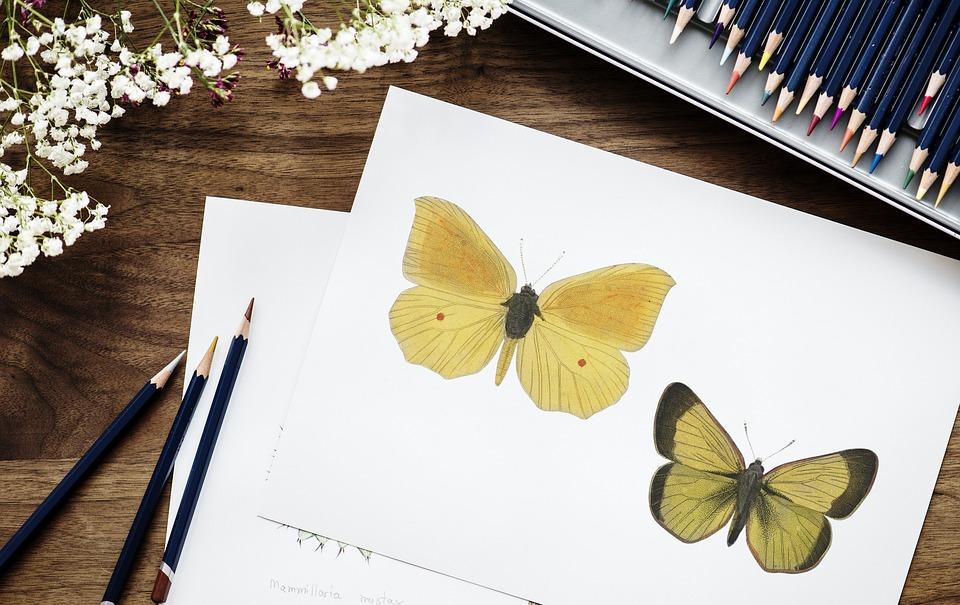 Paper, Desktop, Book Bindings, Adorable, Art, Artist