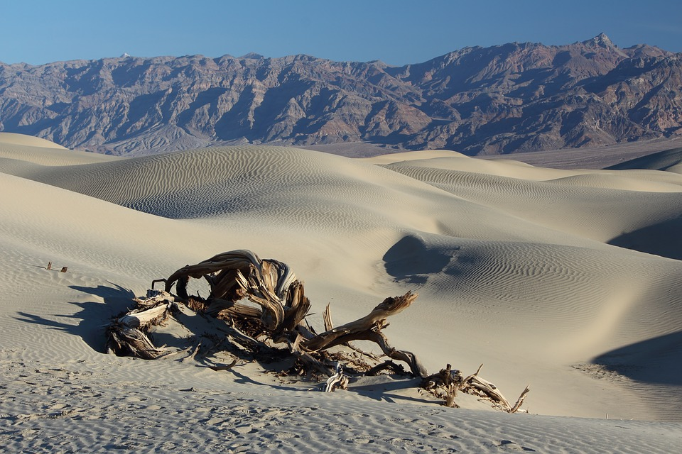Desert, Death Valley, Sand Dunes, Wilderness, Desolate
