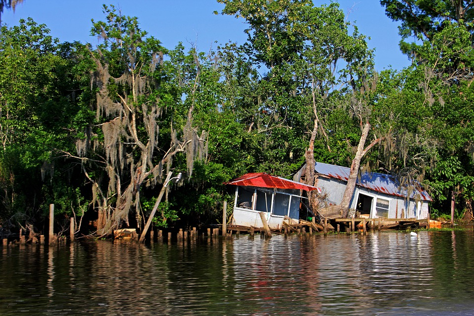 Diladitated, Camp, River, Swamp, Hurricane, Destroyed
