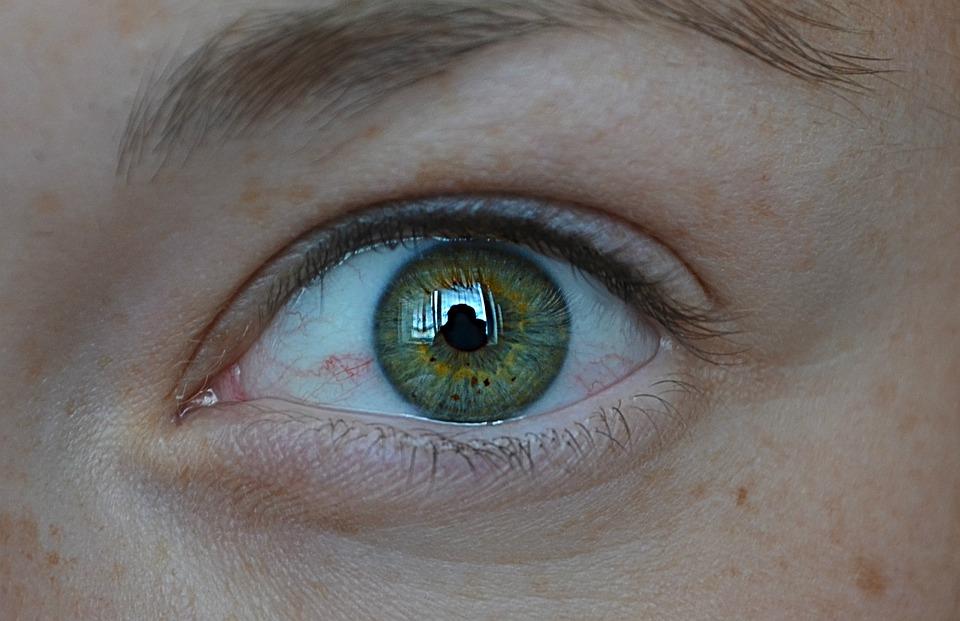 Eye, Green, Detail, Algae