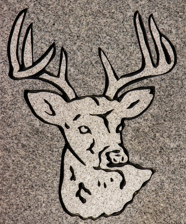 Carving, Animal, Headstone, Symbol, Detail, Granite