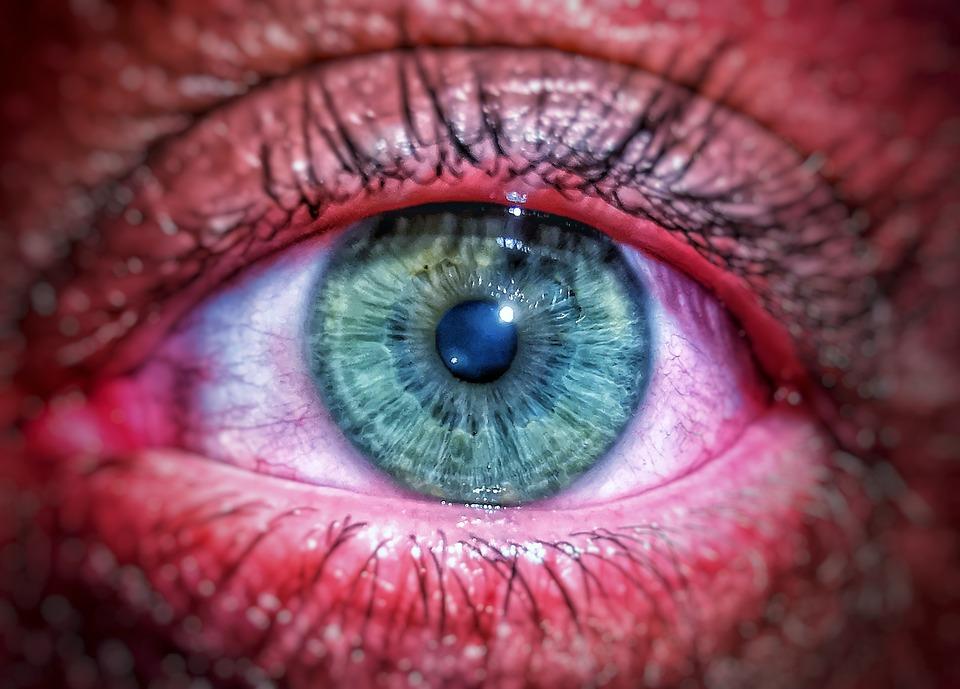 Eyes, Details, Face, Hdr, People, Focus