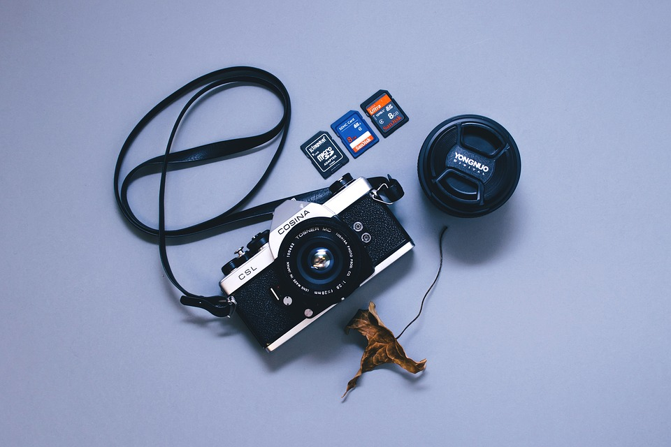 Camera, Camera Lens, Device, Dry Leaf, Electronics