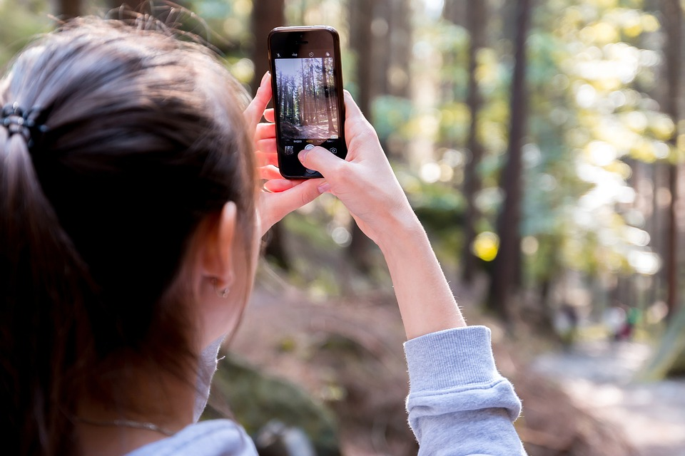Blur, Cellphone, Close-up, Device, Focus, Forest, Girl