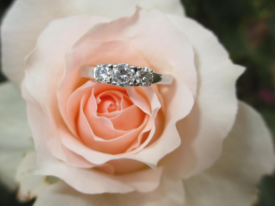b68f77c69 Free photo Diamond Engagement Ring Ring Love Rose Flower - Max Pixel