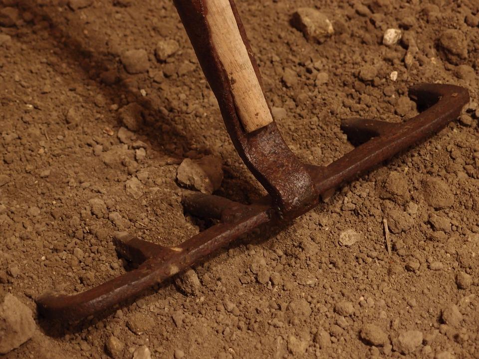 Rake, Field, Agriculture, Dienteyerro, Traditional
