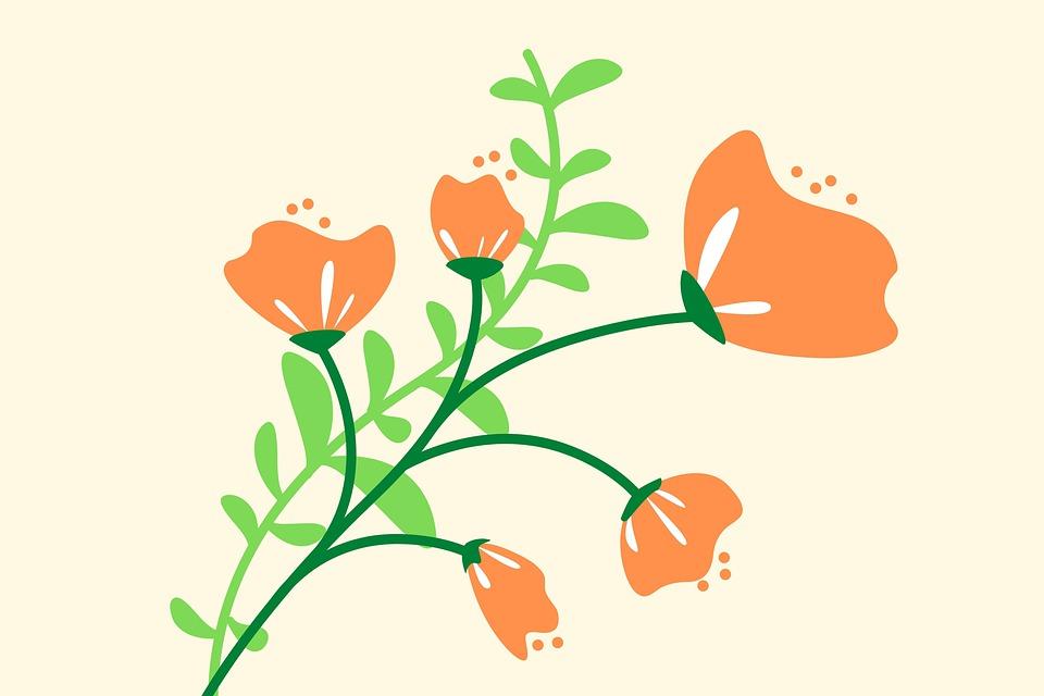 Flower, Digital Art, Flower Art, Flower Nail Art