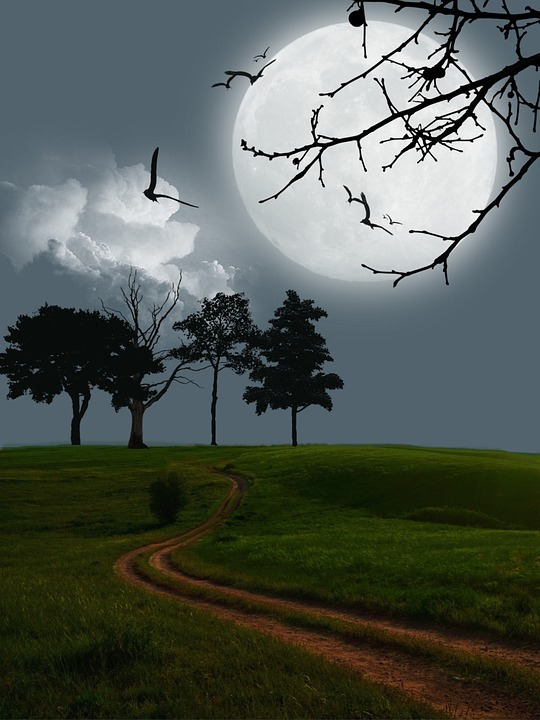 Moon, Field, Digital Art, Fantasy, Night, Evening, Dark