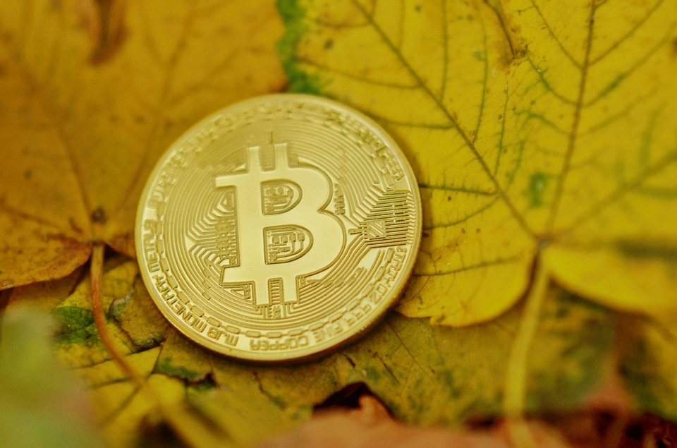 Bitcoin, Cryptocurrency, Coins, Virtual, Digital
