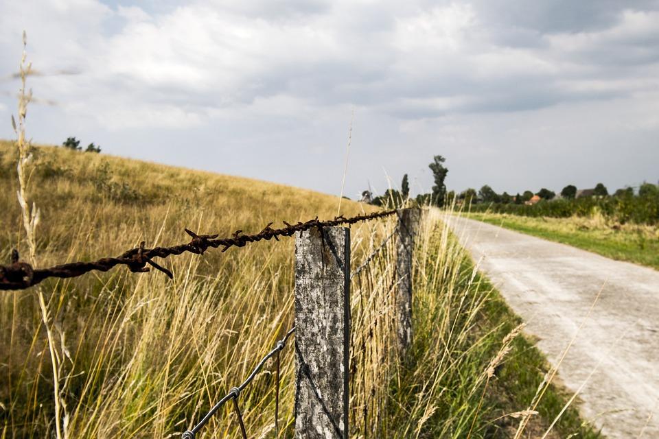 Barbed Wire, Away, Meadow, Dike, Fence, Landscape