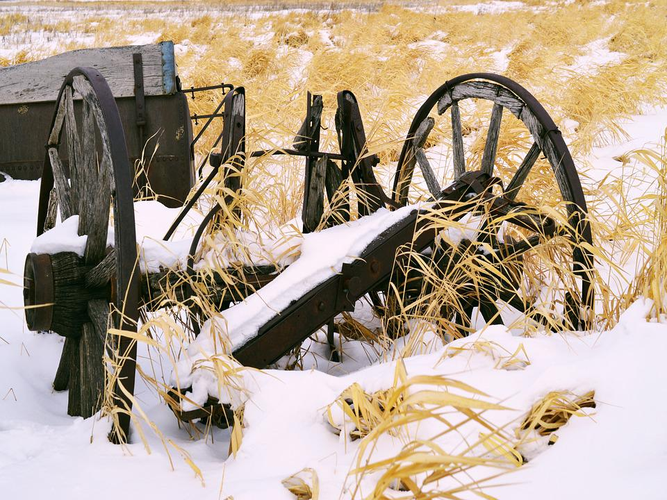 Wheel, Old, Farm Equipment, Dilapidated, Abandoned