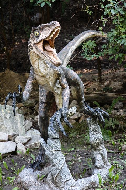 Dinosaur, Velociraptor, Dinopark, Lizard